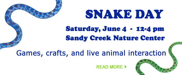 Athens-Clarke County Library Family Fun Day 2016